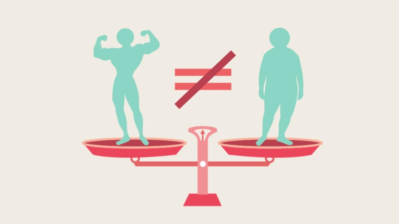 [진단부터 추천식단까지] 비만이란?