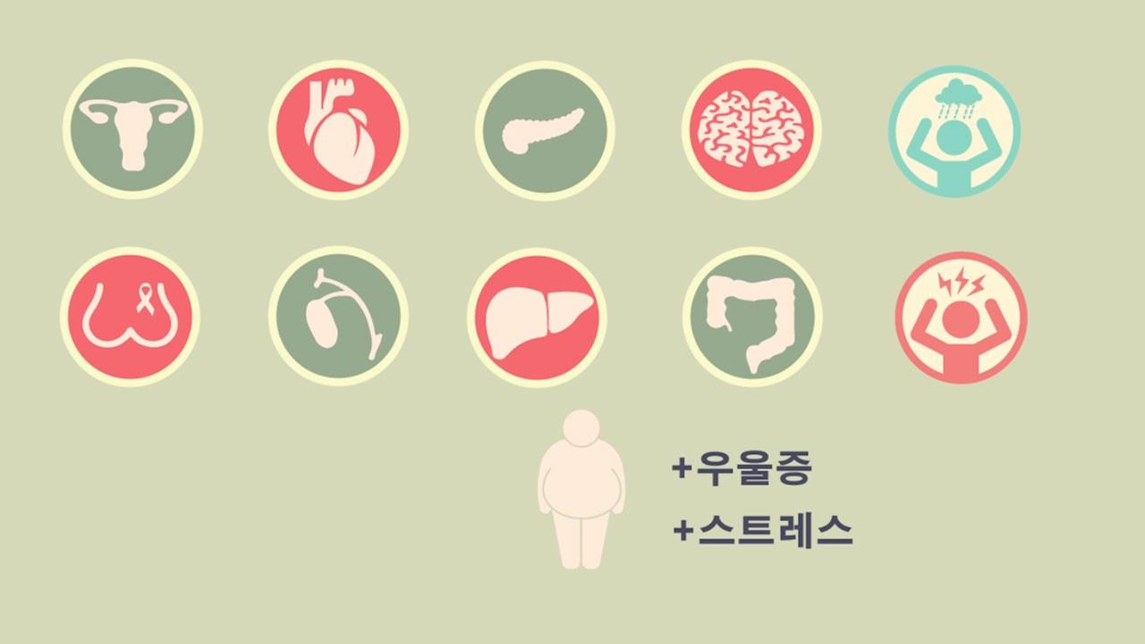 [진단부터 추천식단까지] 비만, 원인부터 알자!