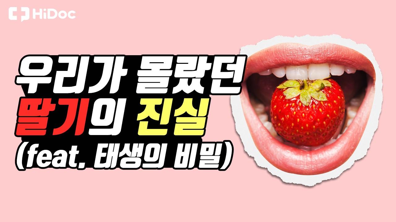우리가 몰랐던 딸기의 진실(feat. 태생의 비밀)